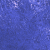 31 Iris Blu